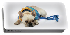 3010.066 Therapet Portable Battery Charger
