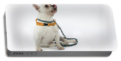 3010.067 Therapet Portable Battery Charger