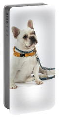 3010.068 Therapet Portable Battery Charger by M K  Miller