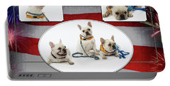 3010.069 Therapet Portable Battery Charger