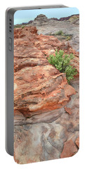 Colorful Sandstone In Valley Of Fire Portable Battery Charger
