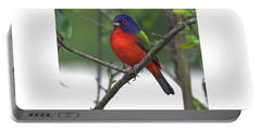 Painted Bunting Portable Battery Charger