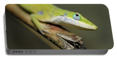 Anole Portable Battery Charger