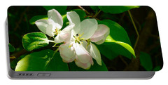 Portable Battery Charger featuring the photograph Apple Blossoms by Johanna Bruwer