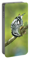 Black And White Warbler Portable Battery Charger by Alan Lenk
