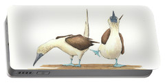 Blue Footed Boobies Portable Battery Charger by Juan Bosco