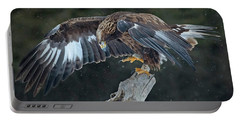 Golden Eagle Portable Battery Charger by CR Courson