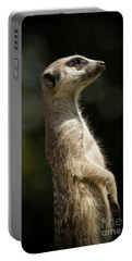 Meerkat Portable Battery Charger by Craig Dingle