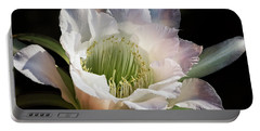 Portable Battery Charger featuring the photograph The Beauty Of White  by Saija Lehtonen