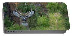 White Tailed Deer Calverton New York Portable Battery Charger