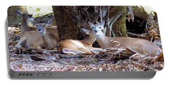 4 Wild Deer Portable Battery Charger by Rosalie Scanlon