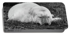 40 Winks Portable Battery Charger