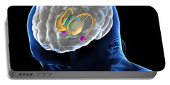 Anatomy Of The Brain Portable Battery Charger