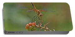 Band-winged Meadowhawk Portable Battery Charger