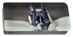 Boston Terrier Puppy Portable Battery Charger by Nailia Schwarz