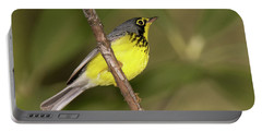 Canada Warbler Portable Battery Charger by Alan Lenk