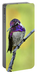 Costas Hummingbird  Portable Battery Charger