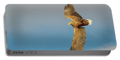 White-tailed Eagle Portable Battery Charger