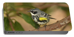 Yellow-rumped Warbler Portable Battery Charger by Alan Lenk