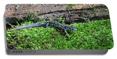Slimy Salamander Portable Battery Charger by Ted Kinsman
