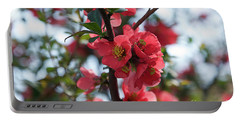 Tree Blossoms Portable Battery Charger by Elvira Ladocki