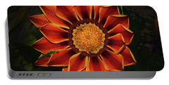 Portable Battery Charger featuring the photograph Beautiful Gazania by Elvira Ladocki