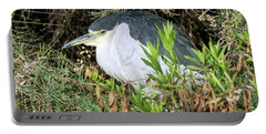 Portable Battery Charger featuring the photograph Black-crowned Night Heron by Tam Ryan