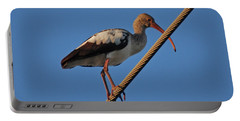Portable Battery Charger featuring the photograph 8- Brown Ibis by Joseph Keane