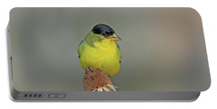 Lesser Goldfinch Portable Battery Charger