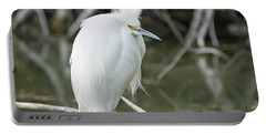 Portable Battery Charger featuring the photograph Snowy Egret by Tam Ryan