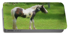 A Beautiful Young Gypsy Vanner Standing In The Pasture Portable Battery Charger