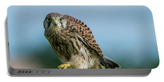 A Beautiful Young Kestrel Looking Behind You Portable Battery Charger