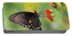 A Butterfly  Portable Battery Charger