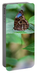 Portable Battery Charger featuring the photograph A Butterfly Waiting by Raphael Lopez