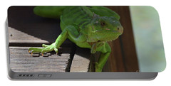 A Close Look At A Green Iguana Portable Battery Charger