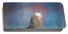 A Colorful Snowy Owl Portable Battery Charger