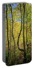 A Day In The Woods Portable Battery Charger