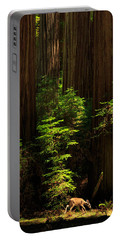 A Deer In The Redwoods Portable Battery Charger