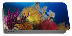 A Diver Looks On At A Colorful Reef Portable Battery Charger