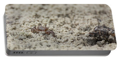 A Fiddler Crab In The Sand Portable Battery Charger