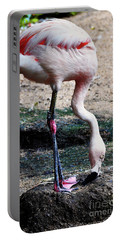 A Flamingos Take On A Headstand Portable Battery Charger