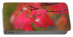A Flash Of Autumn Portable Battery Charger