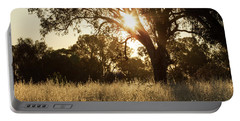 Portable Battery Charger featuring the photograph A Golden Afternoon by Linda Lees