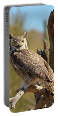A Great Horned Owl On An Old Snag Portable Battery Charger