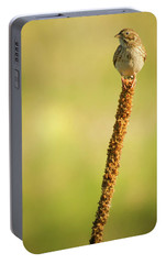 Portable Battery Charger featuring the photograph A Great Sense Of Balance IIi by John De Bord