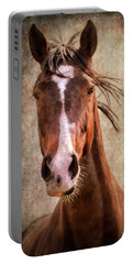 A Horse Of Course Portable Battery Charger