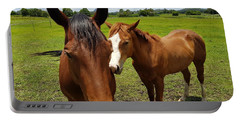 A Horse's Touch Portable Battery Charger