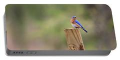 A Little Bluebird Portable Battery Charger