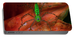 A Little Creepy Crawler Portable Battery Charger by Mike Eingle