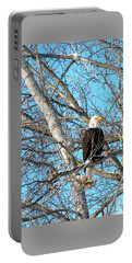 Portable Battery Charger featuring the photograph A Majestic Bald Eagle by Will Borden
